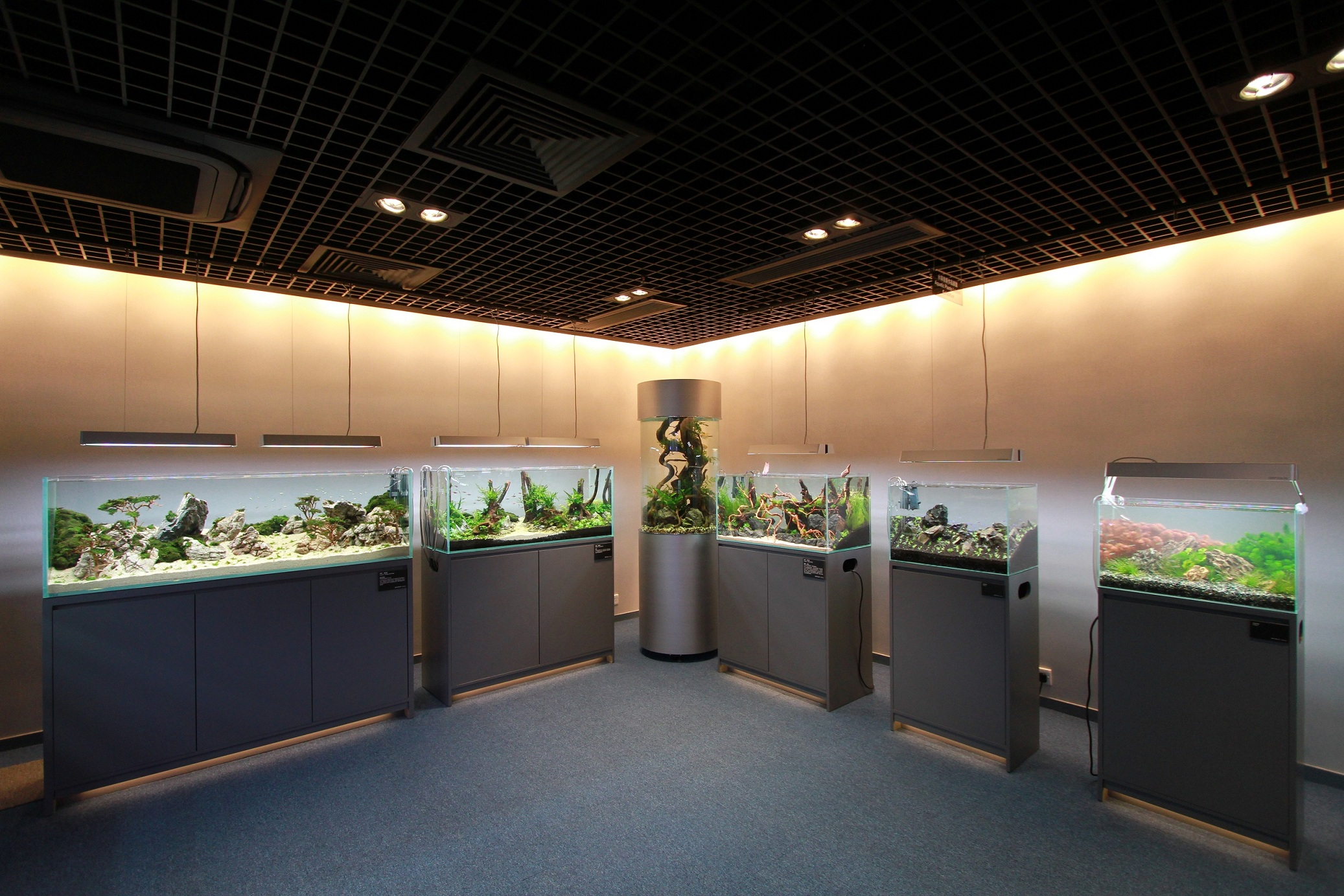 indoor led lighting solutions. opnova gallery a revolution in aquatic lighting - optiled technologies led solution, lamp, fixture for office, shop, interior design, indoor led solutions